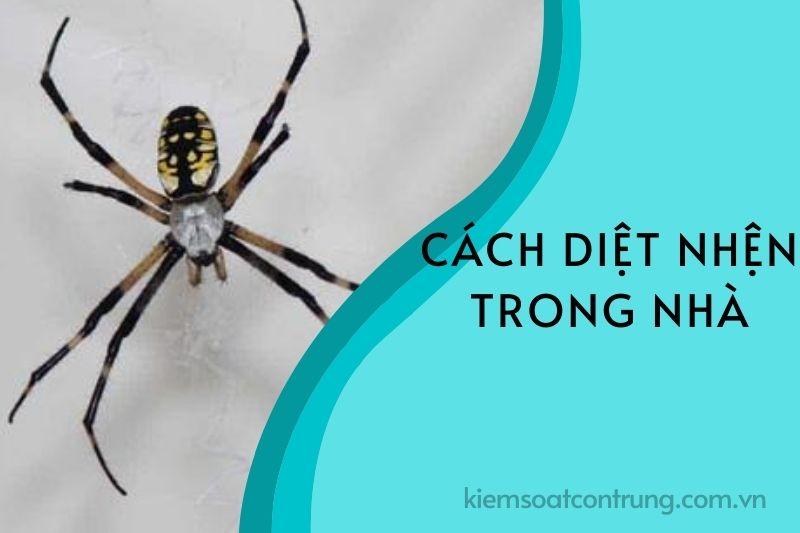 Cách diệt nhện