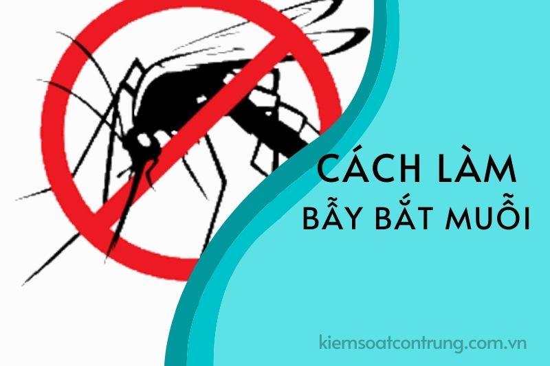 Cách làm bẫy bắt muỗi