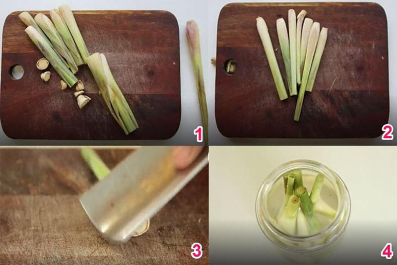 Cách làm tinh dầu sả