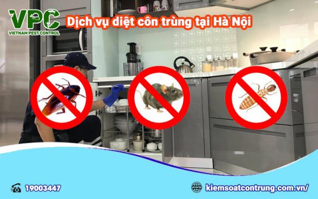 cung cấp dịch vụ diệt côn trùng giá rẻ nhất tại Hà Nội