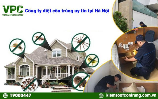 công ty diệt côn trùng chuyên nghiệp tại Hà Nội