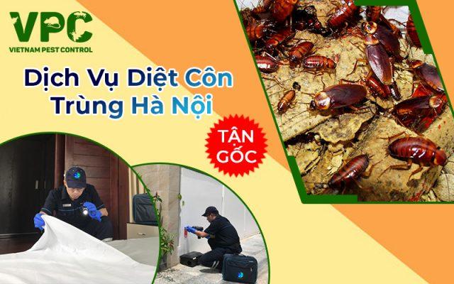 Dịch vụ diệt côn trùng tại Hà Nội hiệu quả tận gốc
