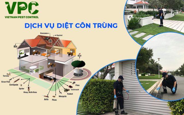 Công ty diệt côn trùng tại nhà ở Hà Nội