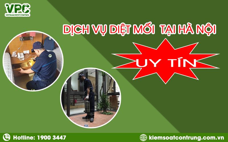 Dịch vụ diệt mối tốt nhất ở Hà Nội